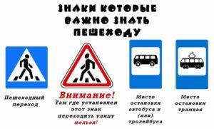 Дорожные знаки которые важно знать пешеходу