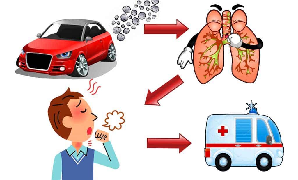 Цепочка загрязнения: автомобильные газы - воздух - легкие человека - болезнь.