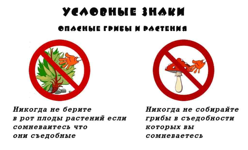 Условных знак опасность ядовитых грибов и растений