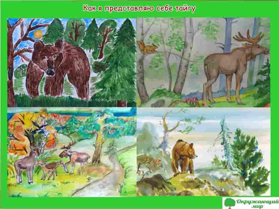 Детский рисунок Как я себе представляю тайгу
