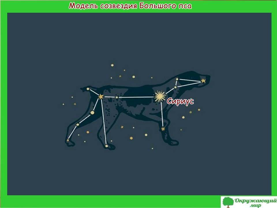 Модель созвездия Большого пса