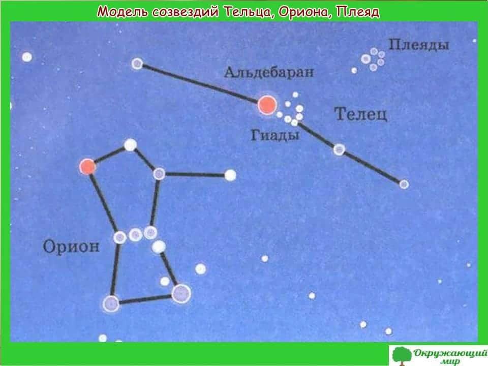 Модель созвездий Тельца, Ориона и Плеяд