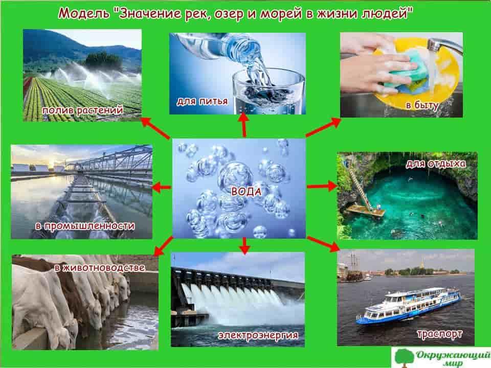 """Модель """"Значение рек, озер и морей в жизни людей"""""""