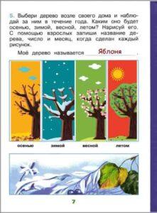 Инструкция по заполнению научного дневника для 1 класса. Наблюдение за деревом