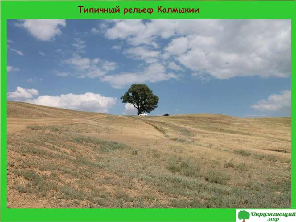 Типичный рельеф Калмыкии