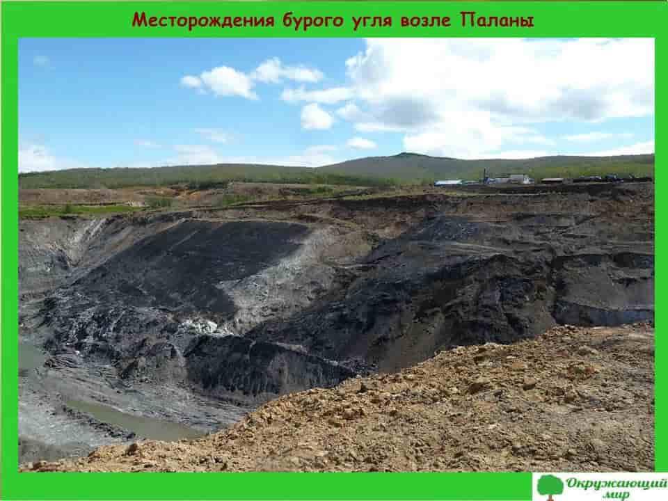 Месторождение бурового угля возле Паланы