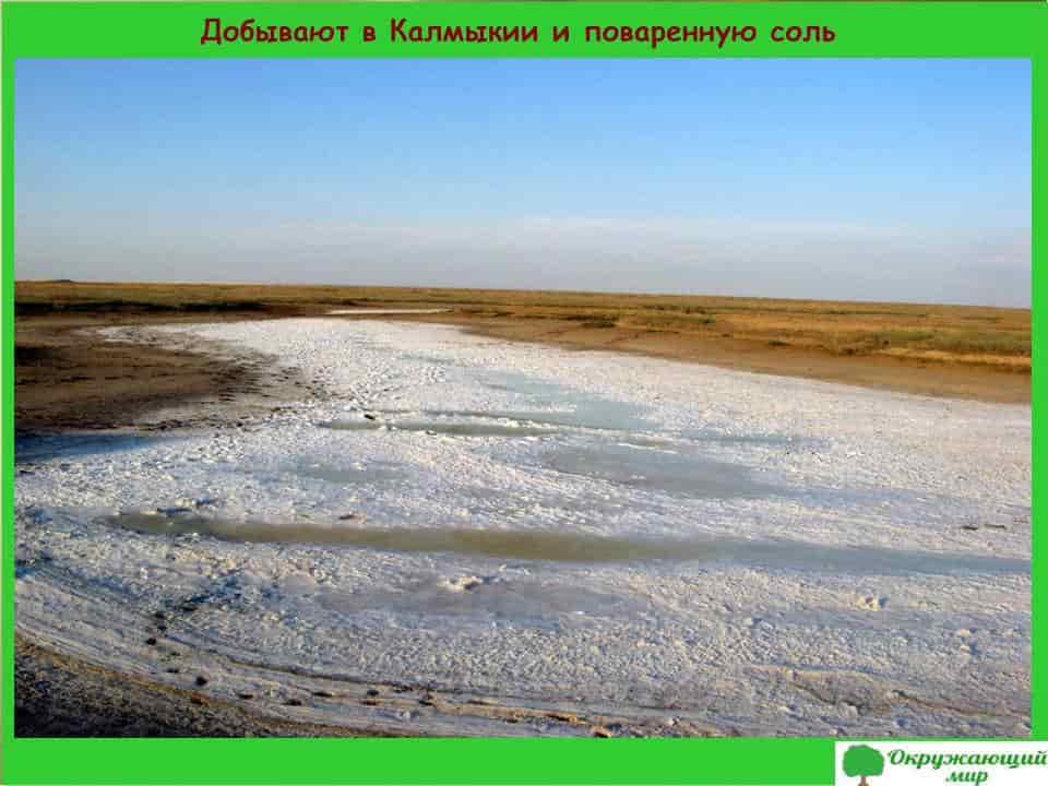 Добывают в Калмыкии и поваренную соль