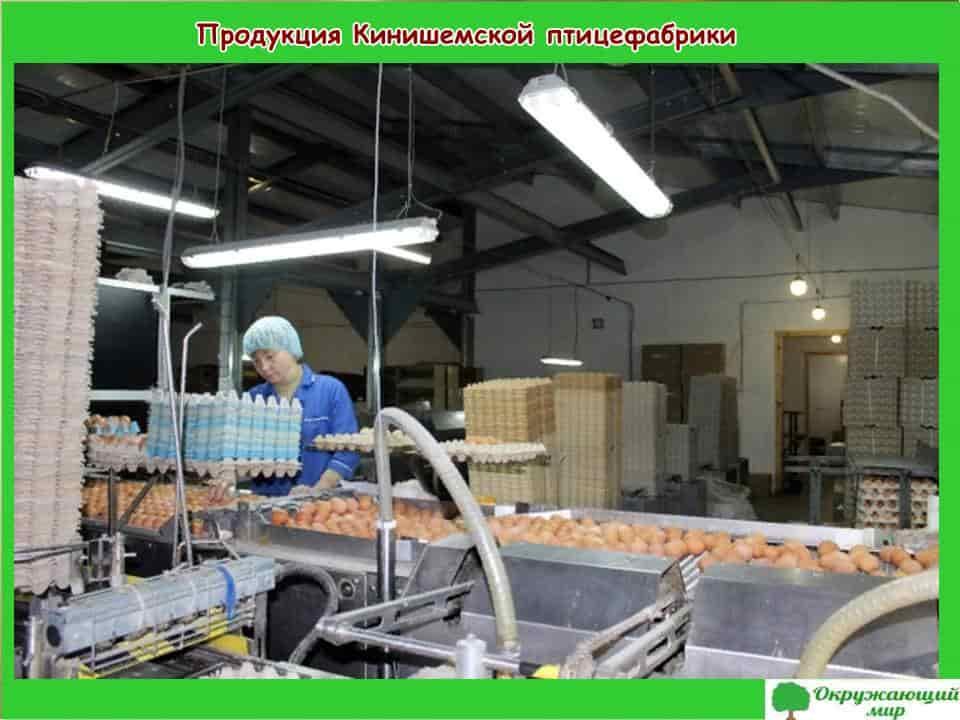 Продукция Кинешемской птицефабрики
