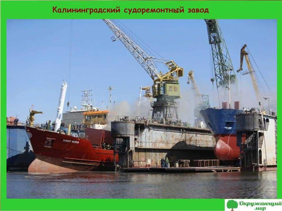 Калининградский судоремонтный завод