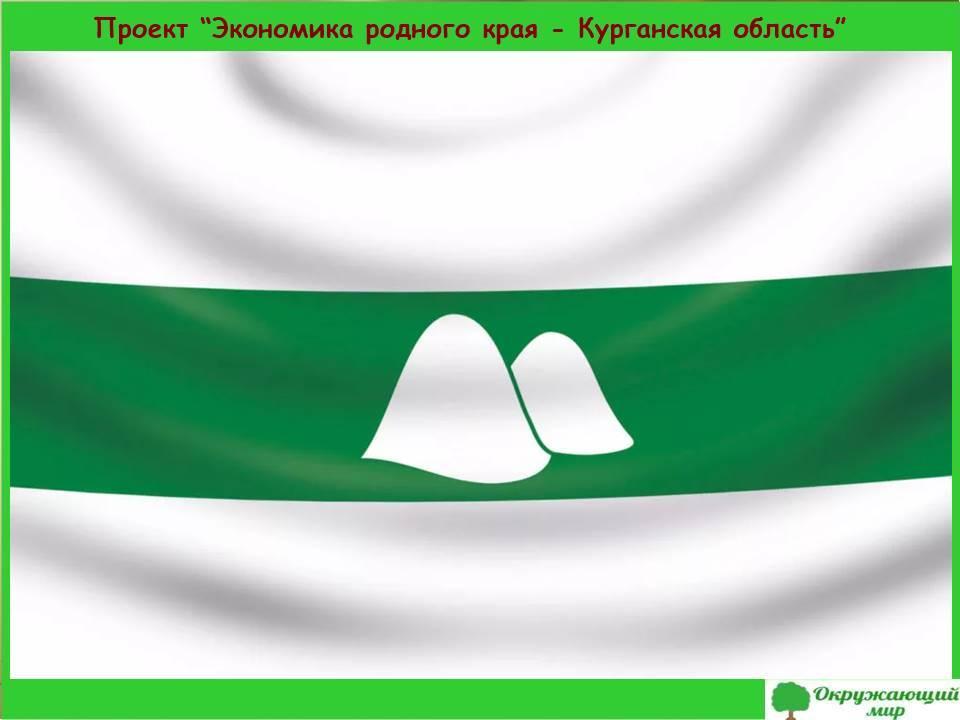 Проект экономика родного края-Курганская область