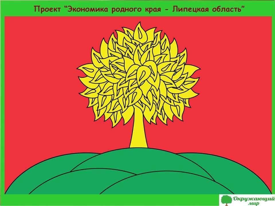 Проект Экономика родного края-Липецкая область