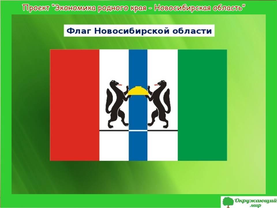 Проект экономики родного края-Новосибирская область
