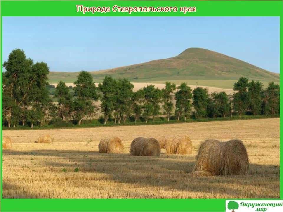 Природа Ставропольского края