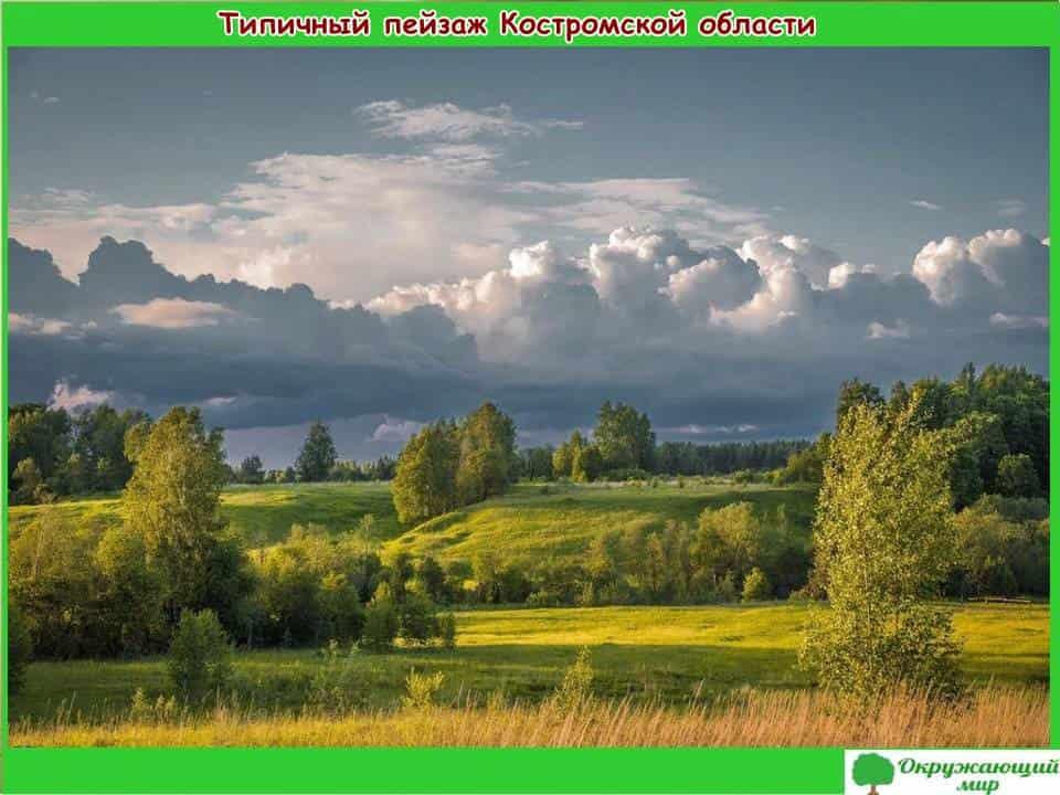 Типичный пейзаж Костромской области