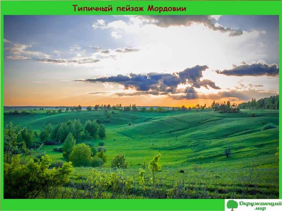 Типичный пейзаж Мордовии