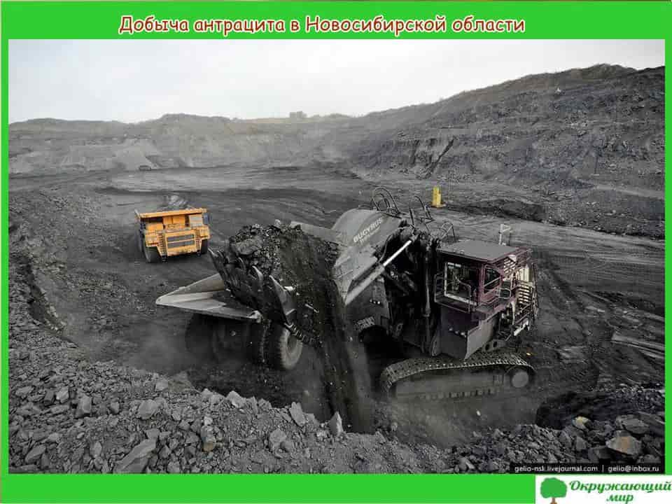 Добыча антрацита в Новосибирской области