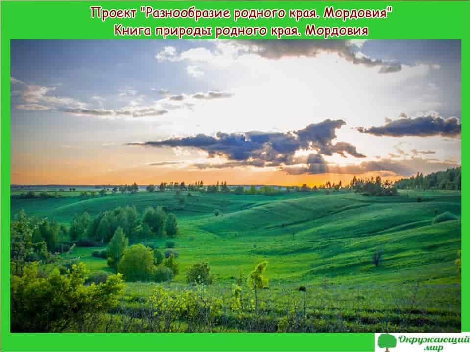 Проект Разнообразие природы родного края Мордовия