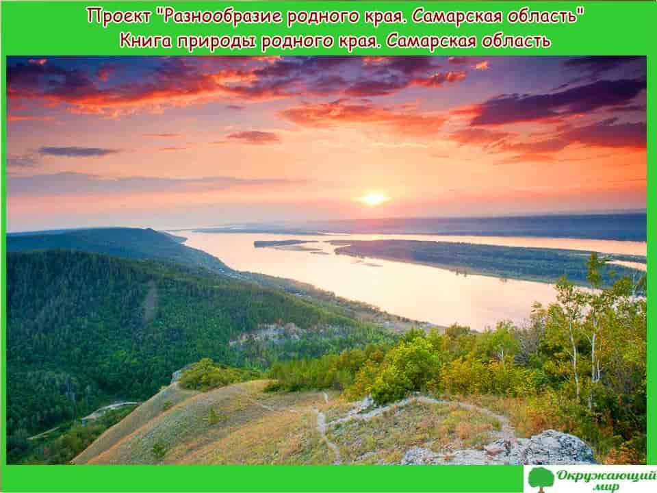 Проект Разнообразие природы родного края Самарская область