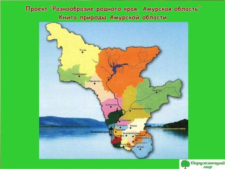 Проект разнообразие родного края Амурская область