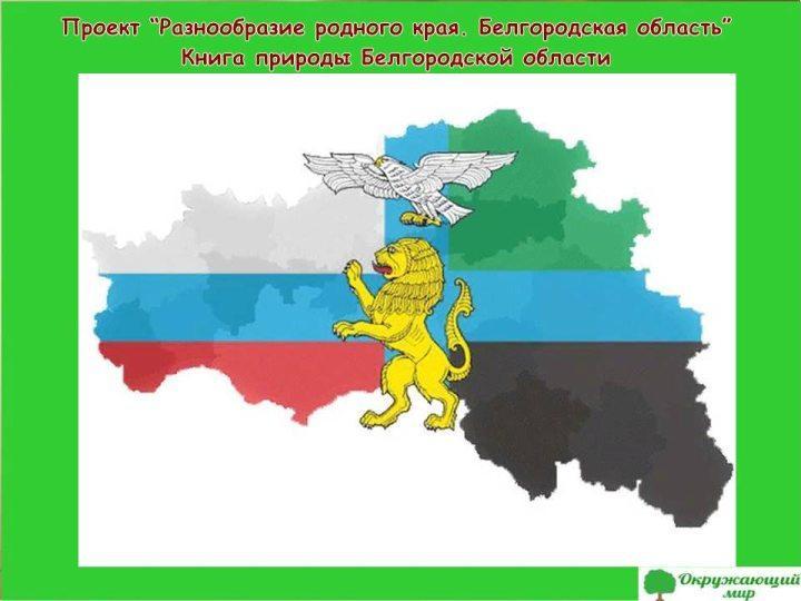 Проект Разнообразие родного края Белгородская область