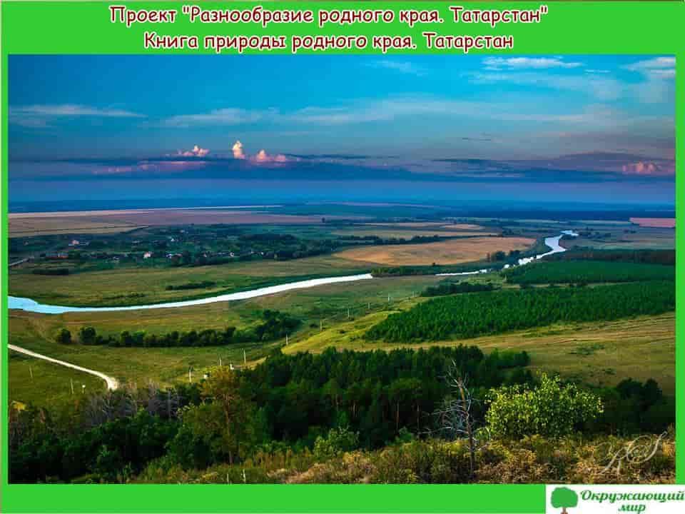 Проект Разнообразие родного края республика Татарстан