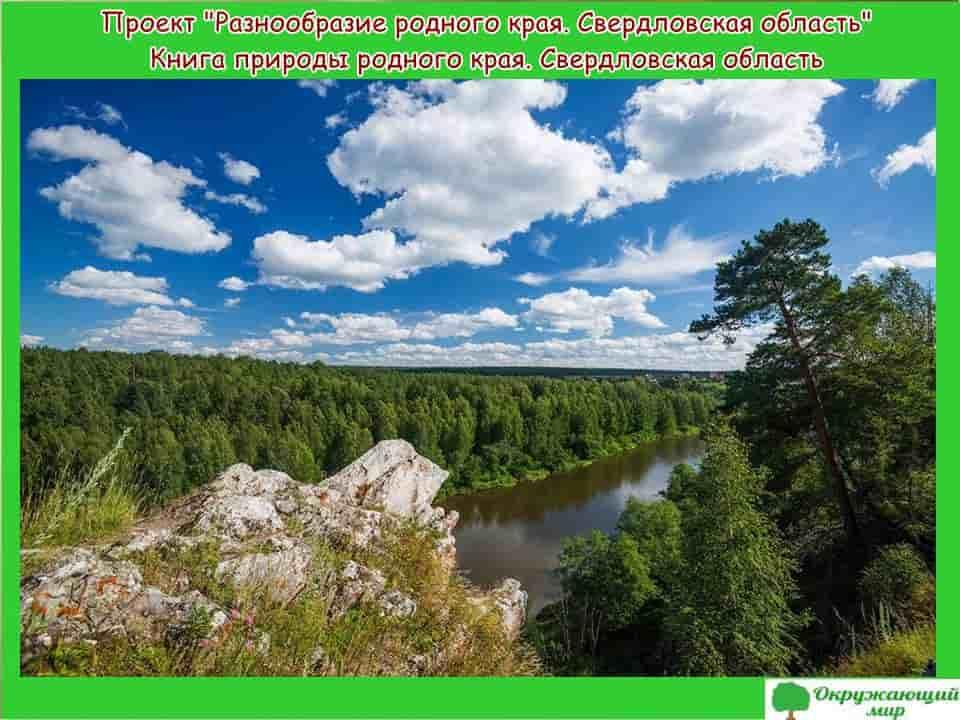 Проект разнообразие родного края Свердловская область