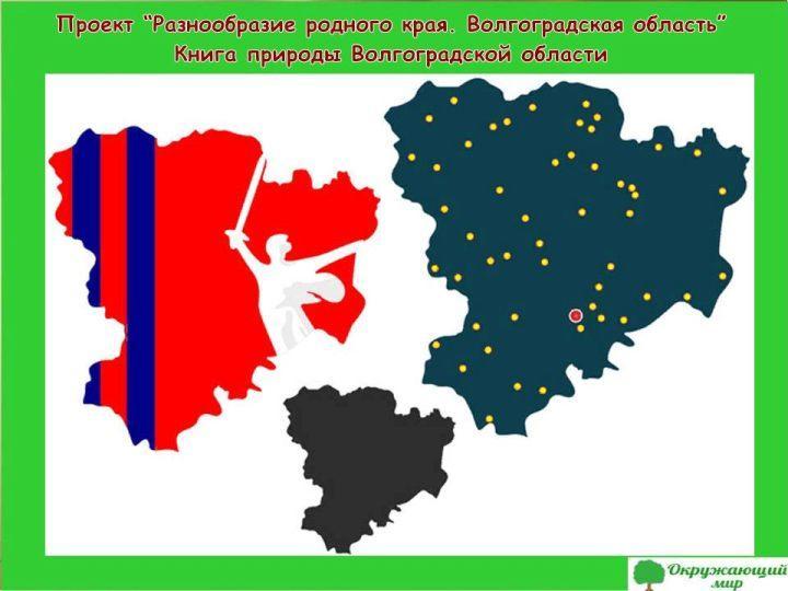 Проект Разнообразие родного края Волгоградская область