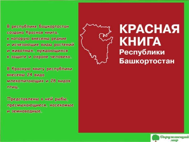 Красная книга Башкортстана