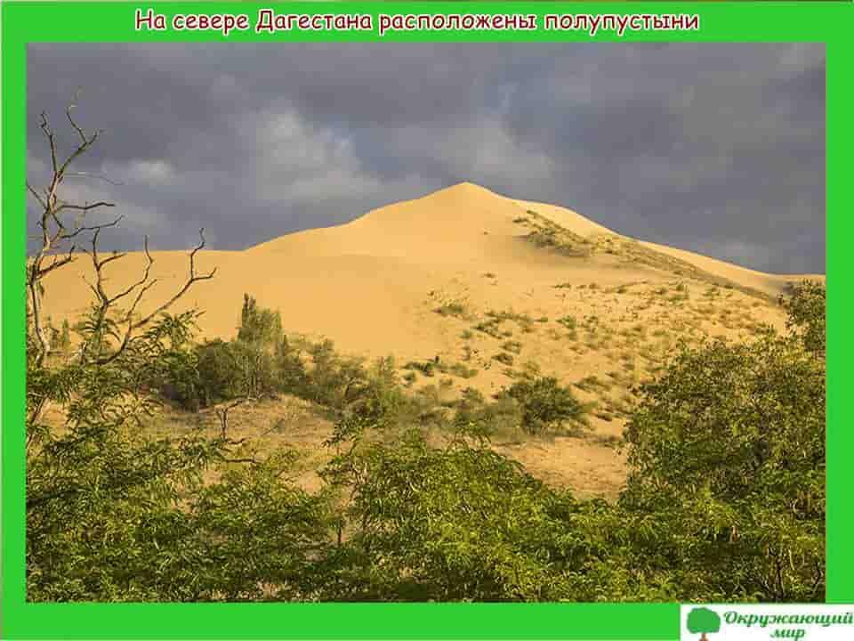 Полупустыни Дагестана
