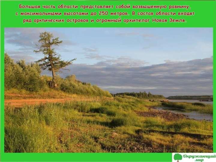 Равнины Архангельской области