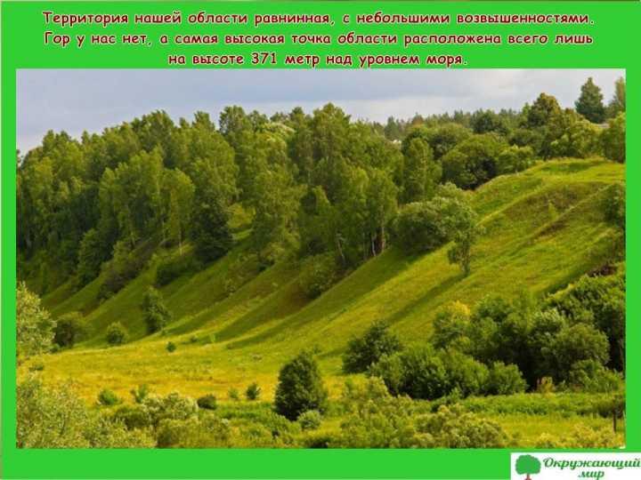 Окружающий мир 3 класс 1 часть Проект Разнообразие природы родного края - Владимирская область 2