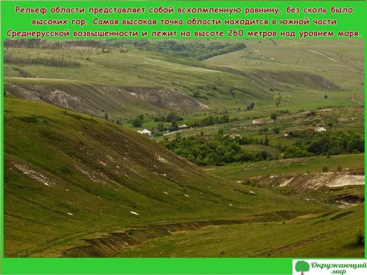 Территория Воронежской области