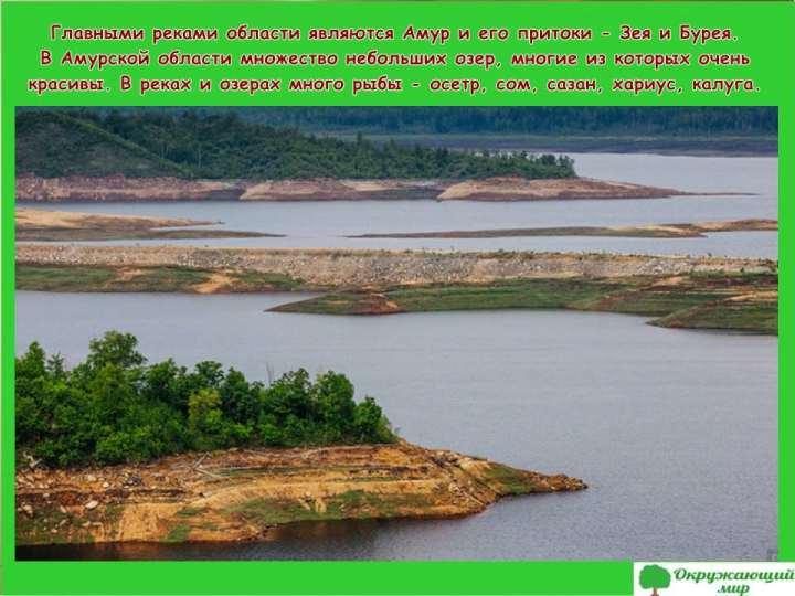 Главные реки Амурской области