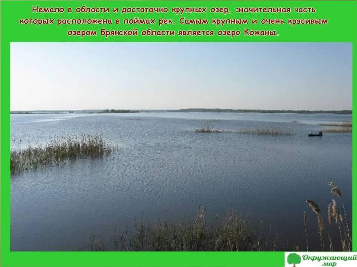 Озера Брянской области