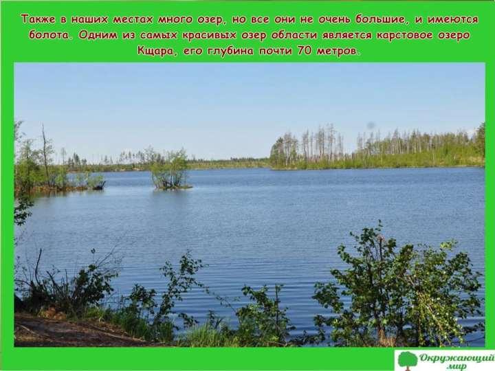 Окружающий мир 3 класс 1 часть Проект Разнообразие природы родного края - Владимирская область 4
