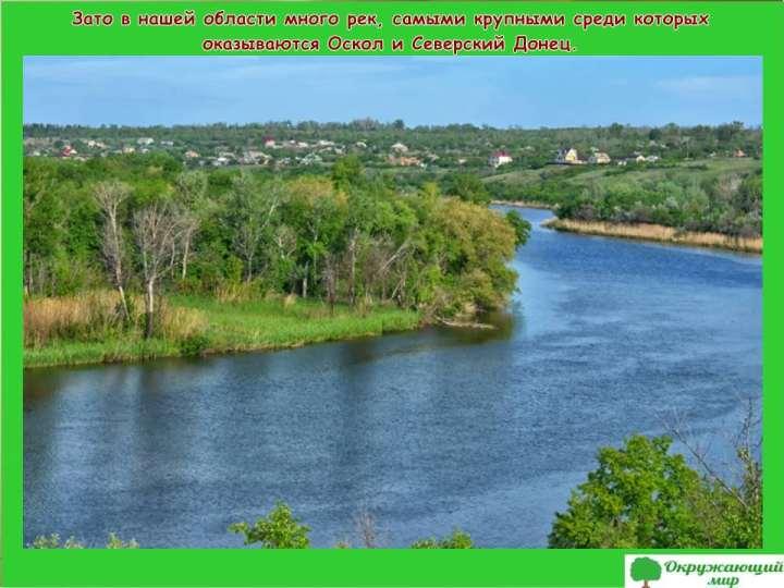 Реки Белгородской области
