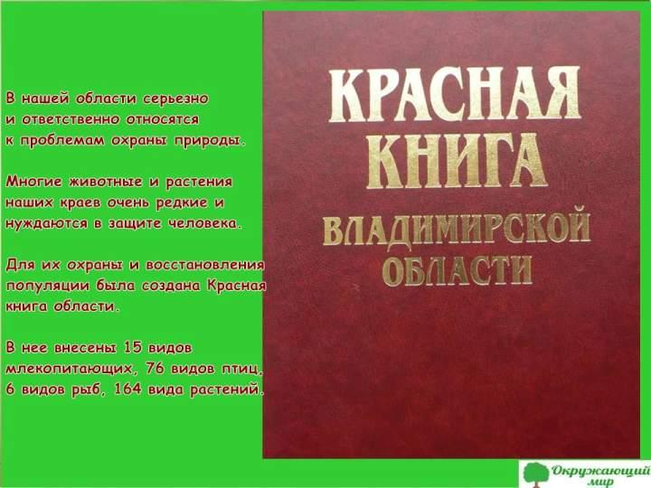 Окружающий мир 3 класс 1 часть Проект Разнообразие природы родного края - Владимирская область 9