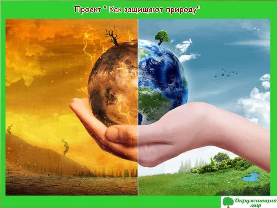 Проект Как защищают природу