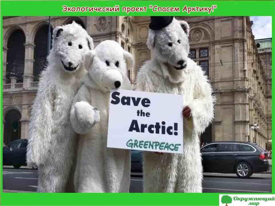 Экологический проект Спасем Арктику