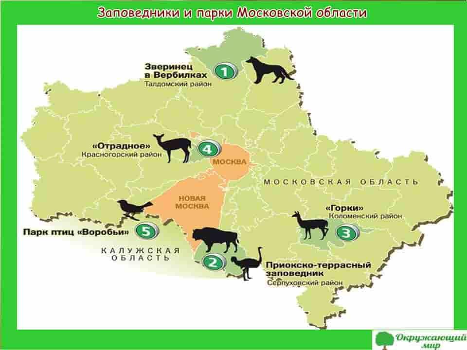 Заповедники и парки Московской области