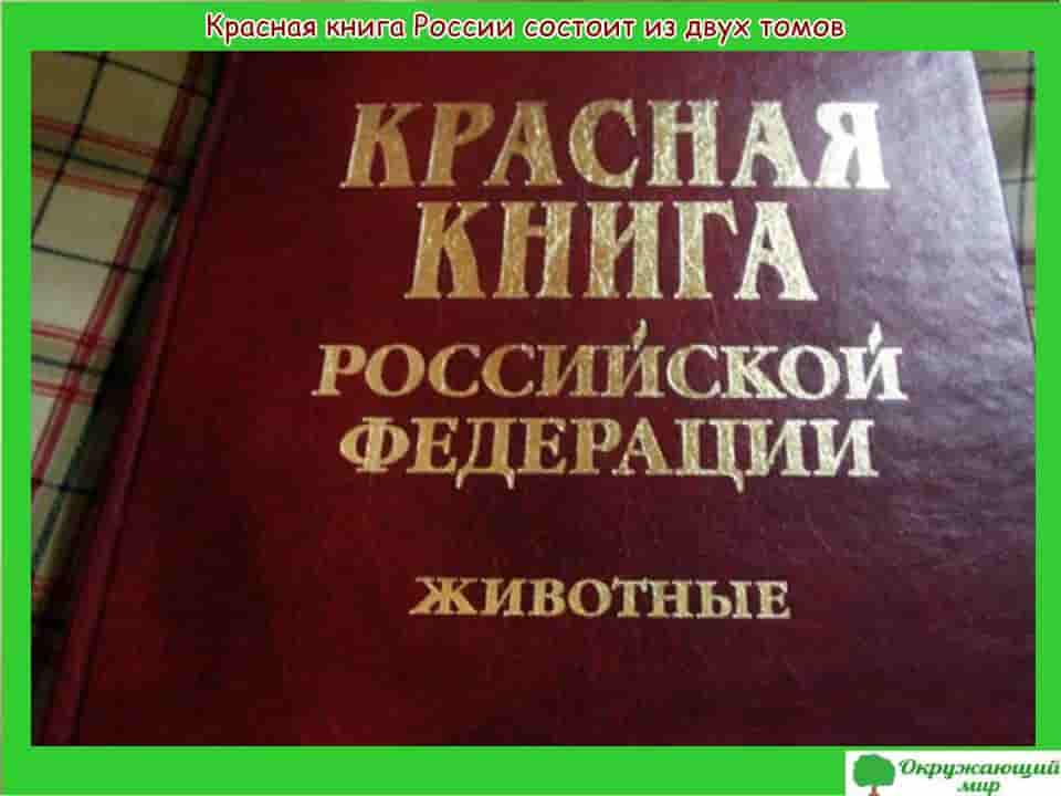 Красная книга России состоит из двух томов