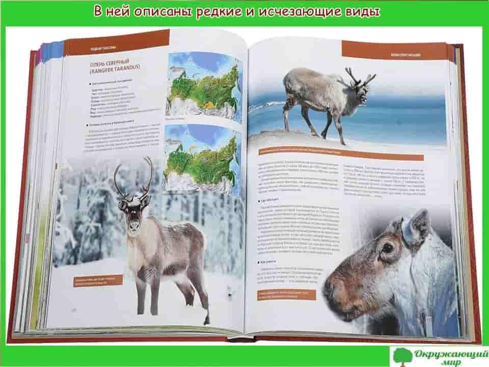 В ней описаны редкие и исчезающие виды