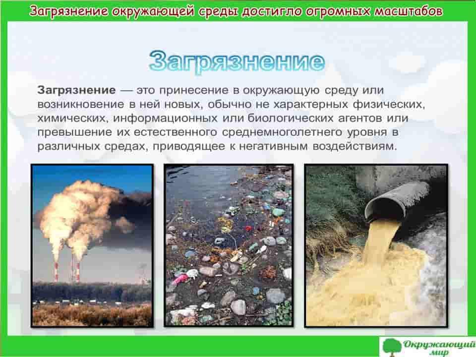 Загрязнение окружающей среды достигло огромных масштабов