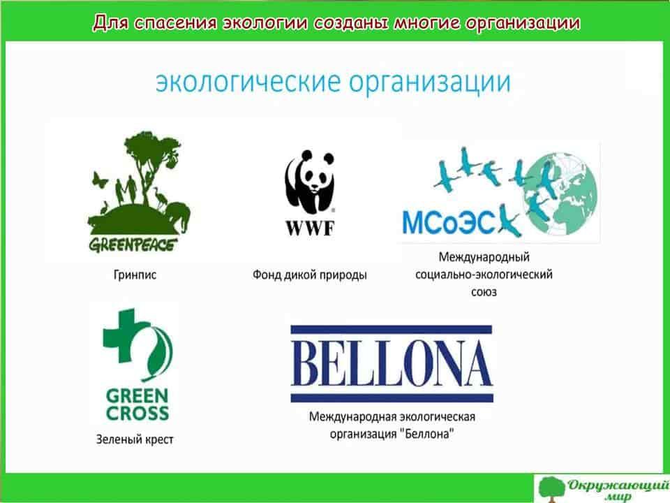 Для спасения экологии создано много организаций