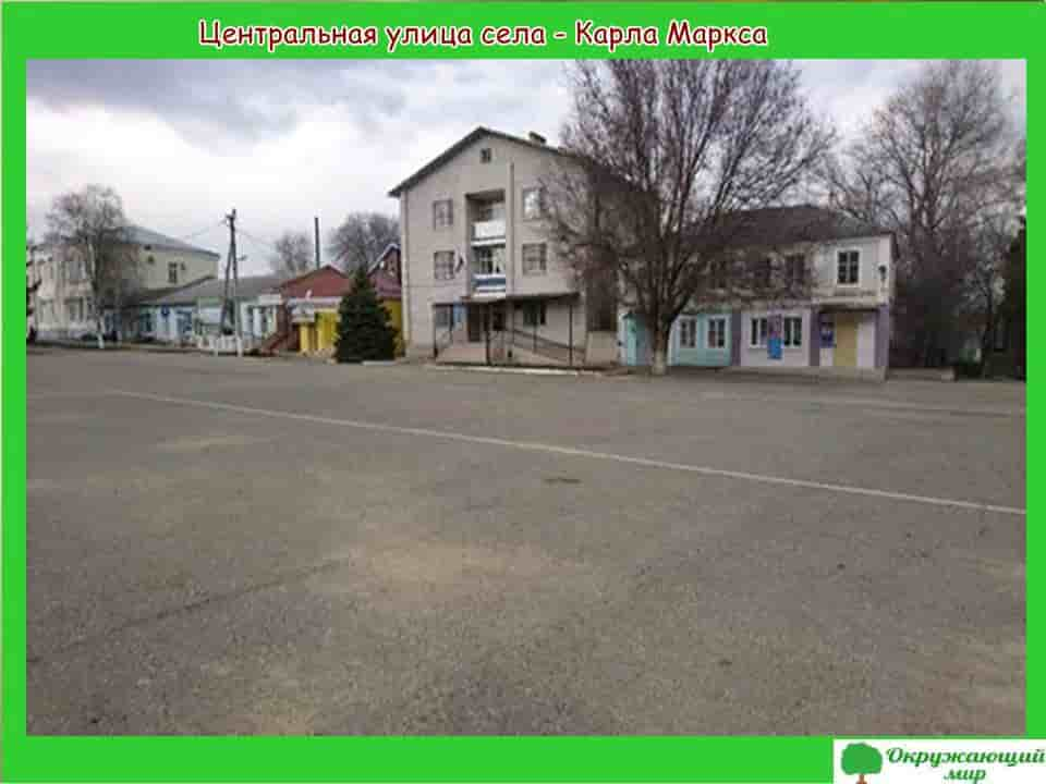 Центральная улица Александровского