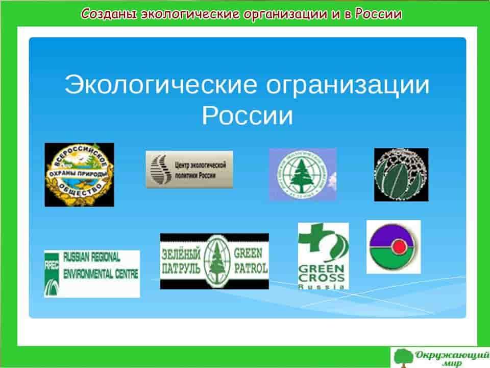 Созданы экологические организации в России