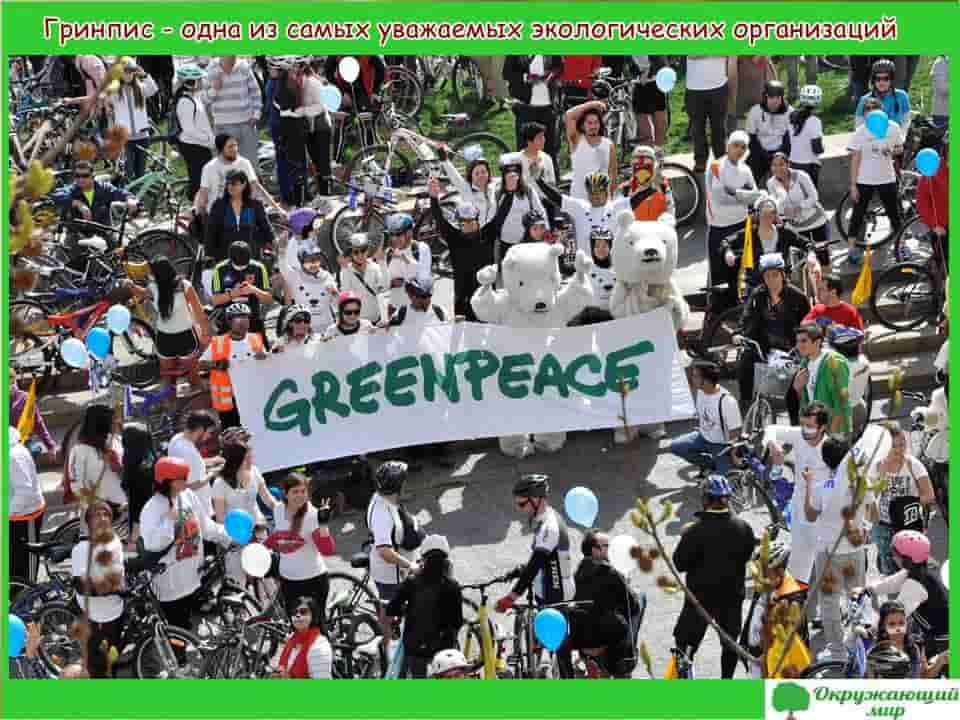 Гринпис - одна из уважаемых экологических организаций