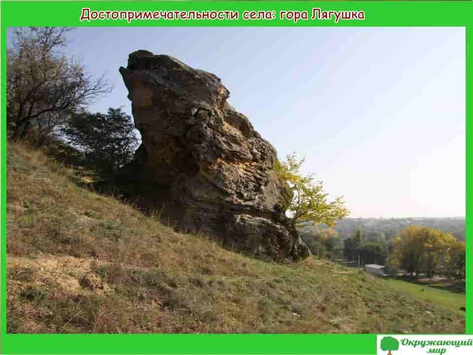 гора лягушка села Александровского