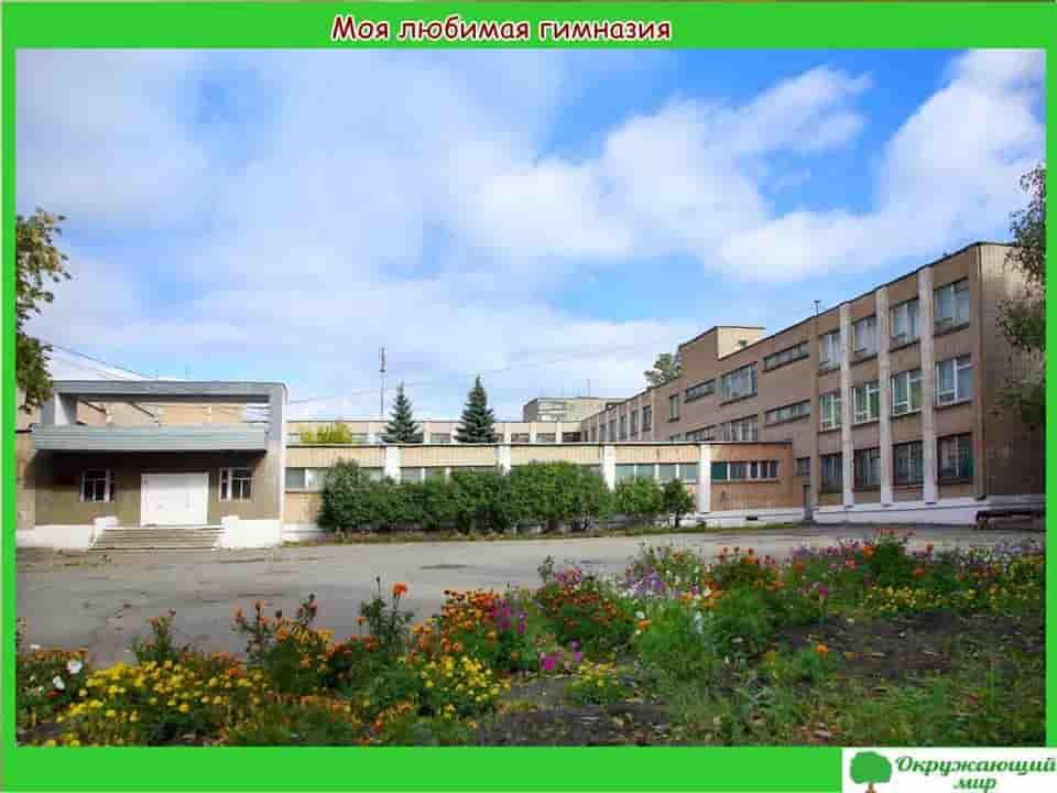 Моя любимая гимназия в Челябинске