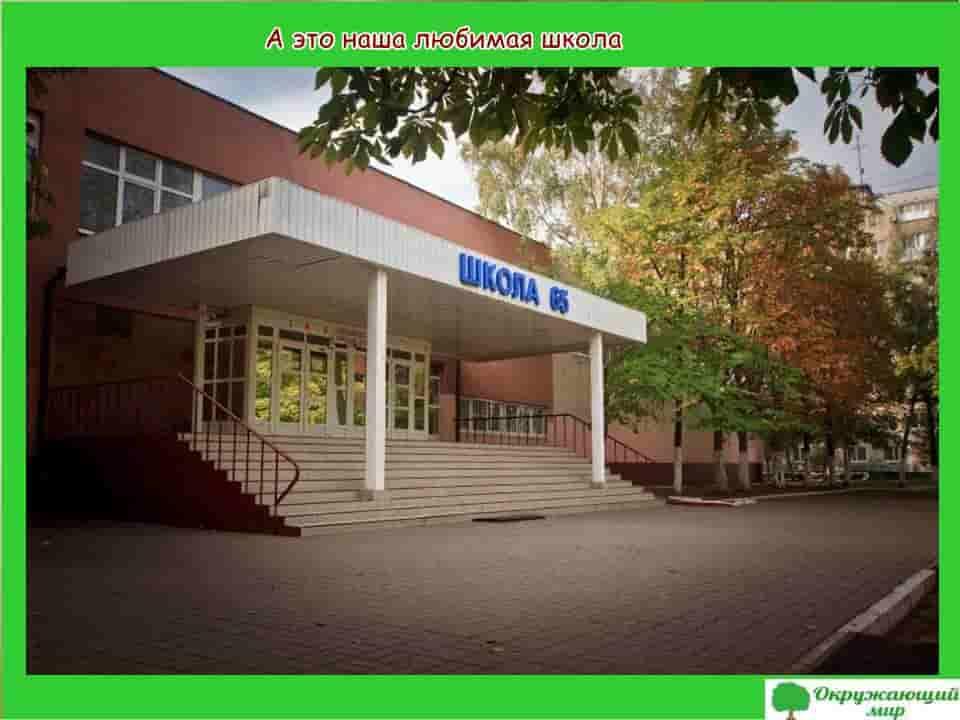 Моя любимая школа в Ростове на Дону